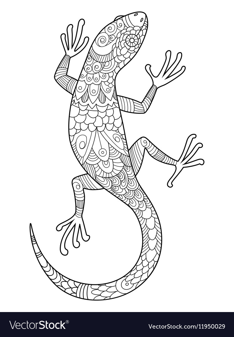 Lizard Coloring Book For Adults Vector By Apokusay Image
