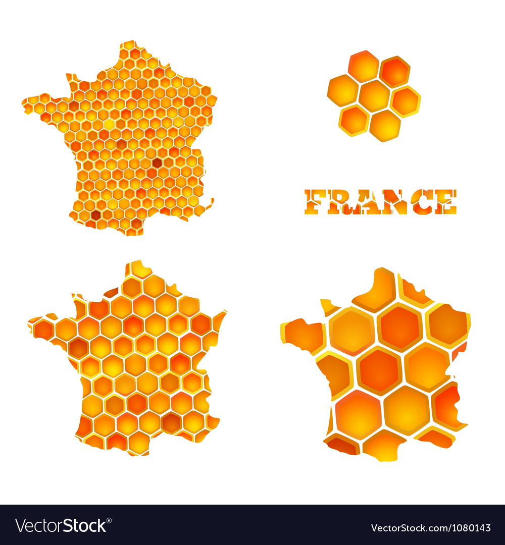 Set of map icons of france with honey cells vector