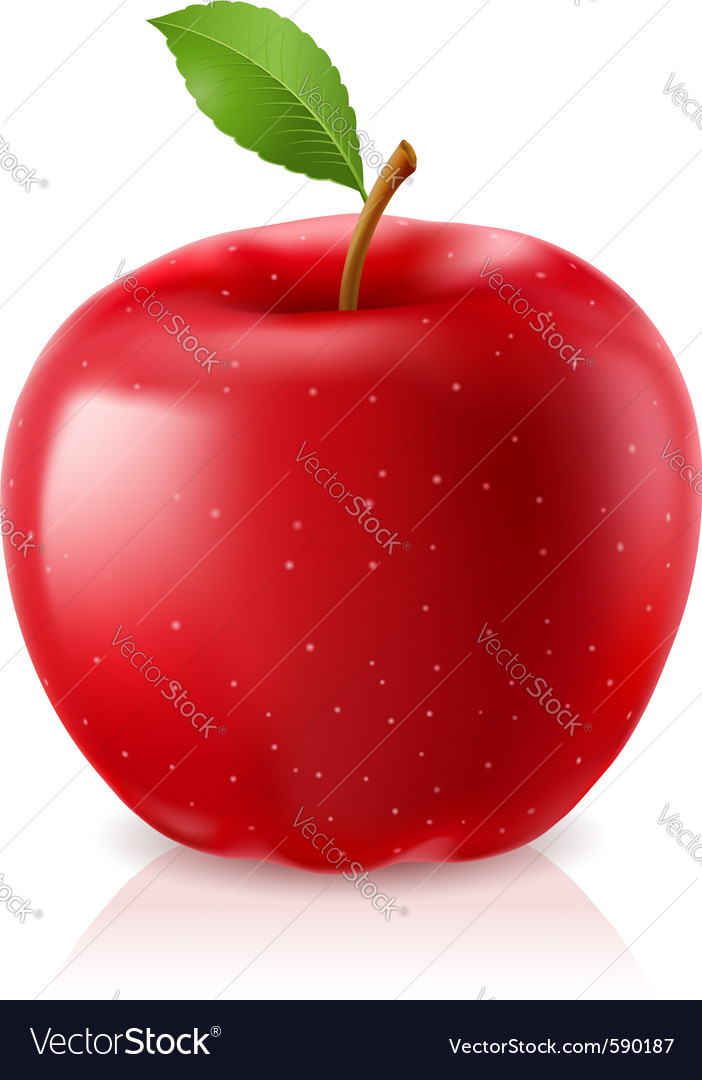 Delicious red apple vector