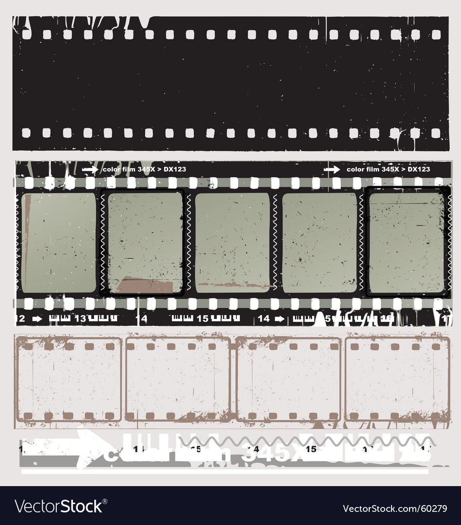 Free film strip vector