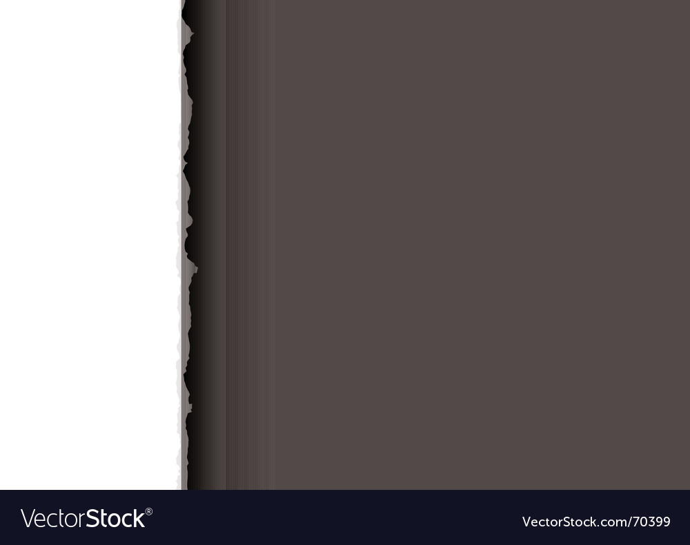 Simple tear light divide vector