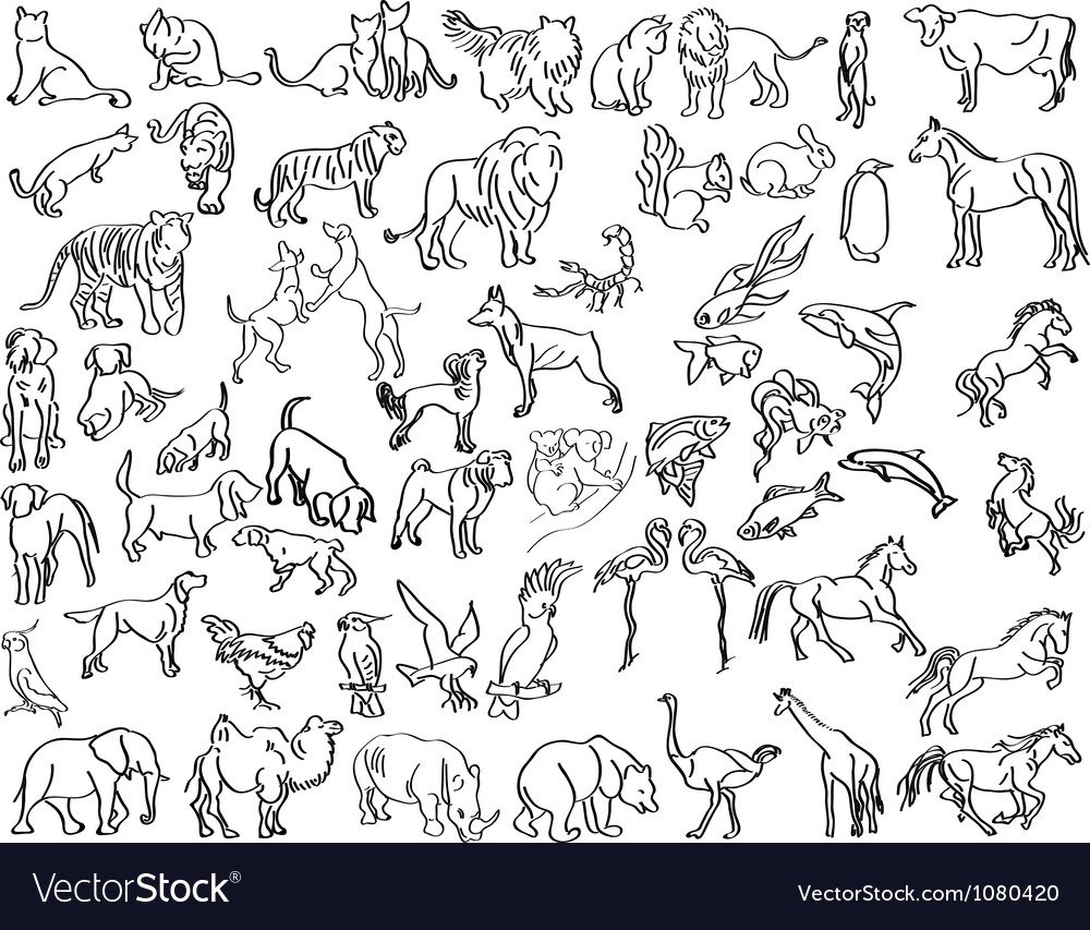 Sketches of animals vector