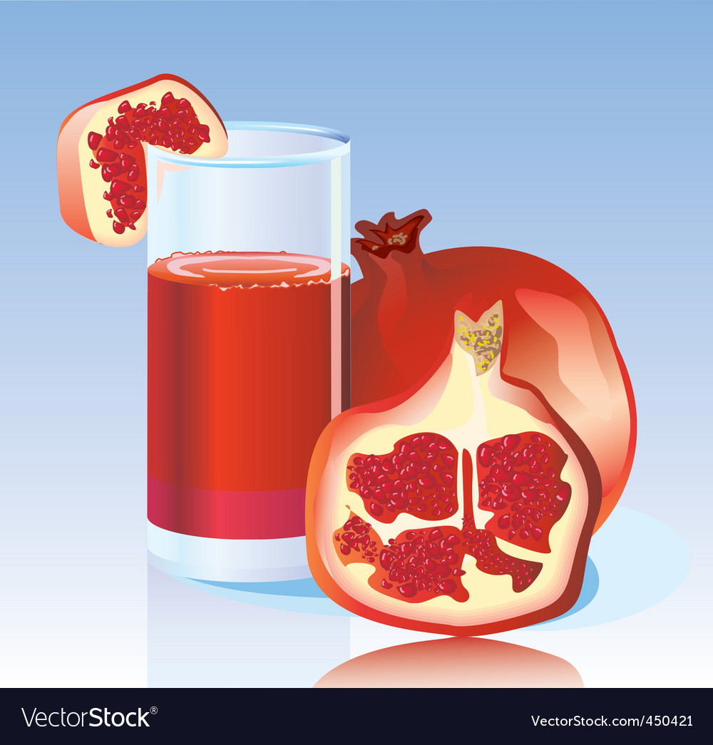 Fresh garnet juice vector