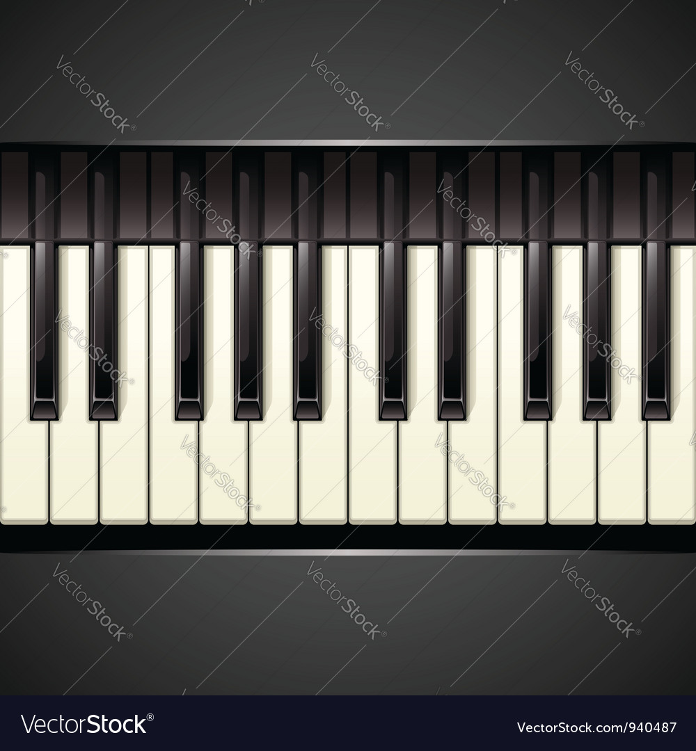 Piano key vector
