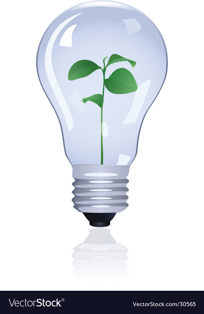 Plant in lamp vector