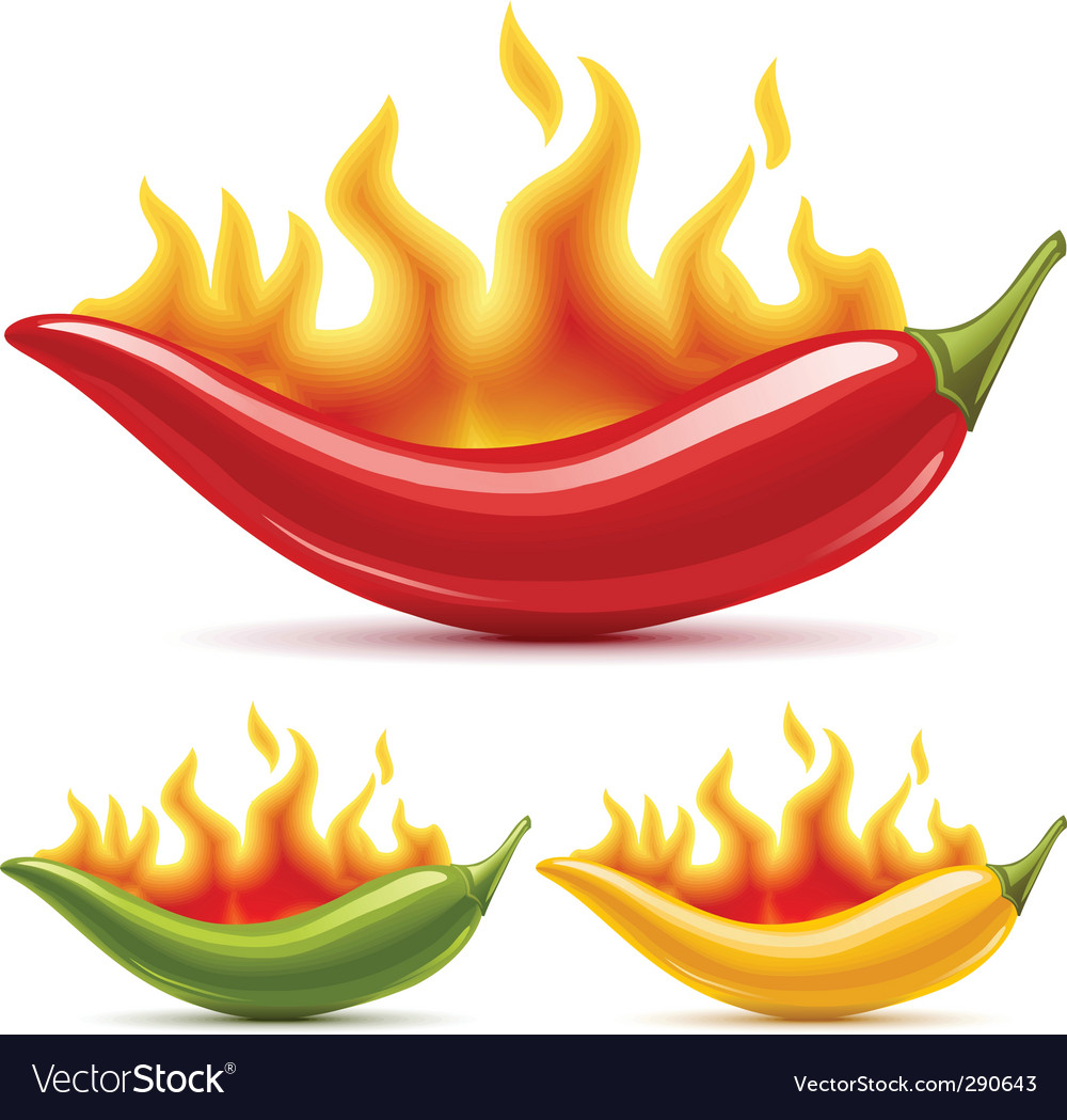 Red hot chili peppers vector