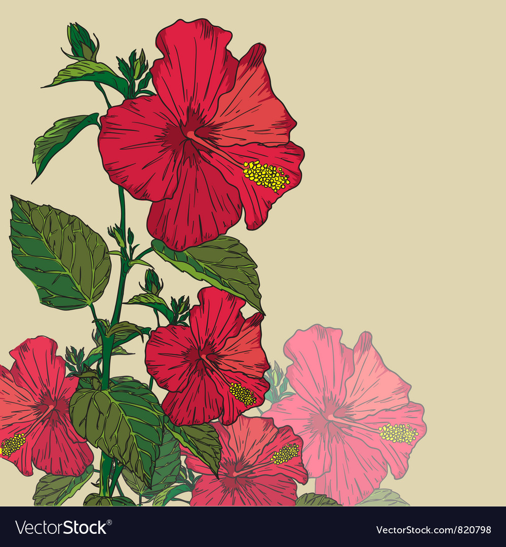 Decorative flower background vector