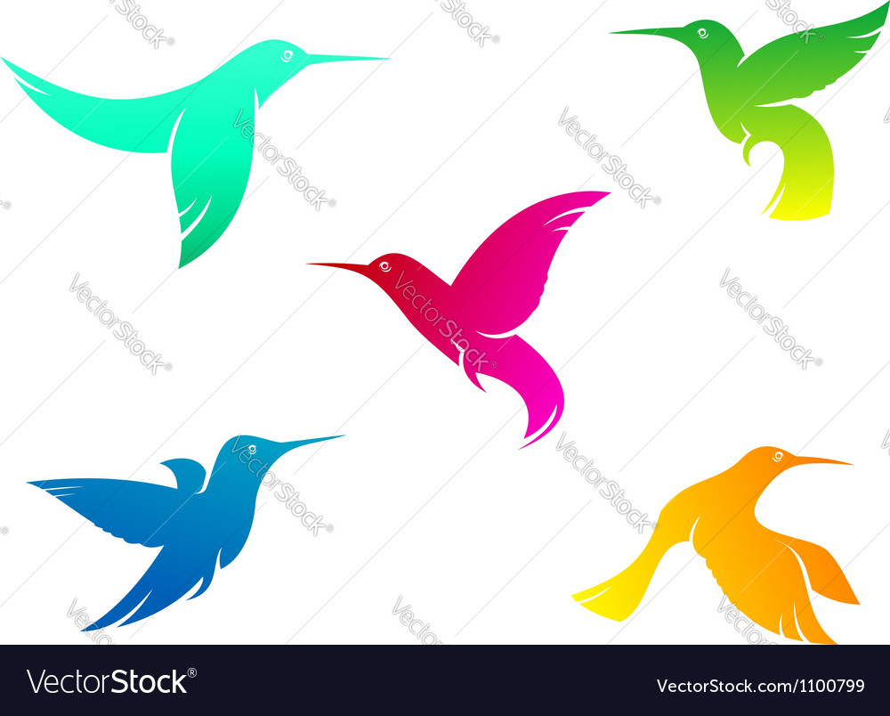 Flying color hummingbirds vector
