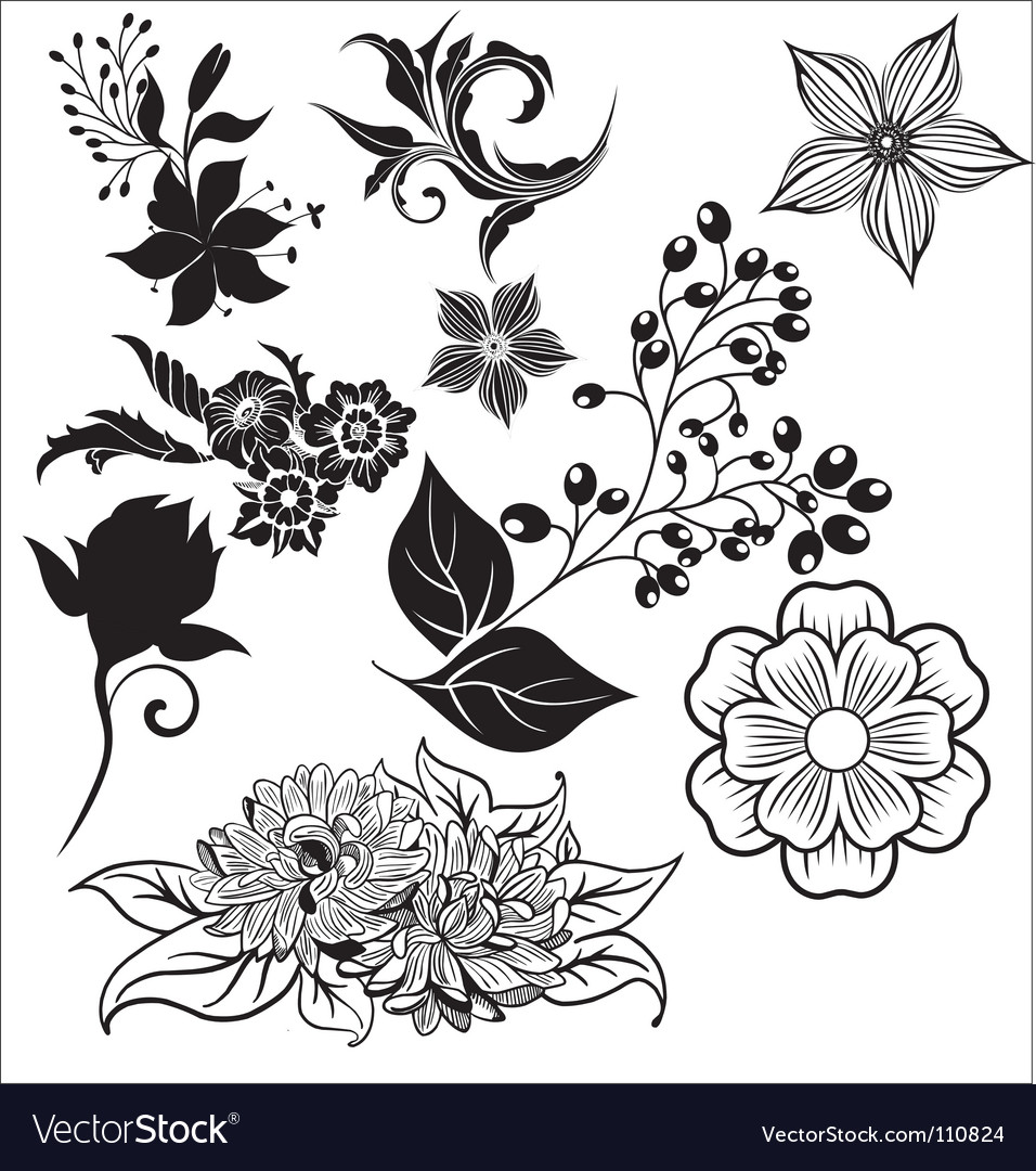 Free floral elements vector