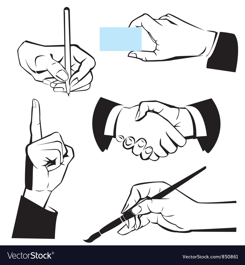 Hands  different gestures vector
