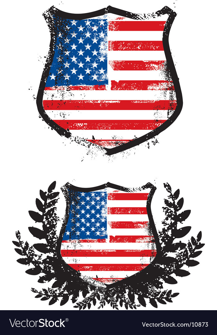 American grunge shield vector
