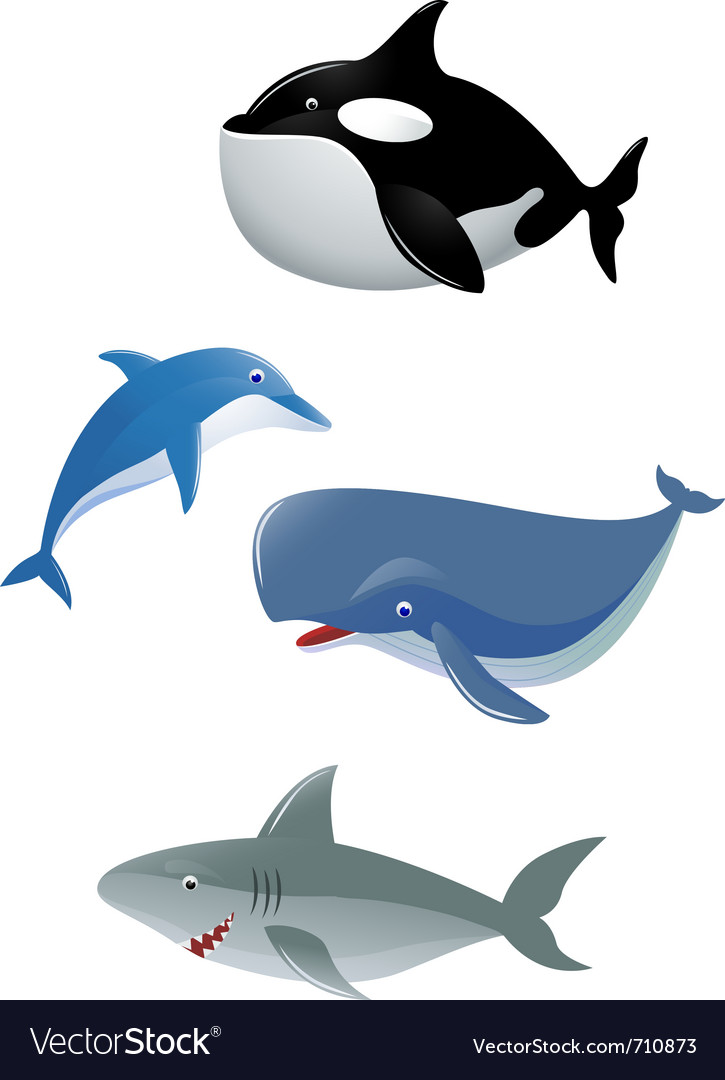 Sea animal collection vector