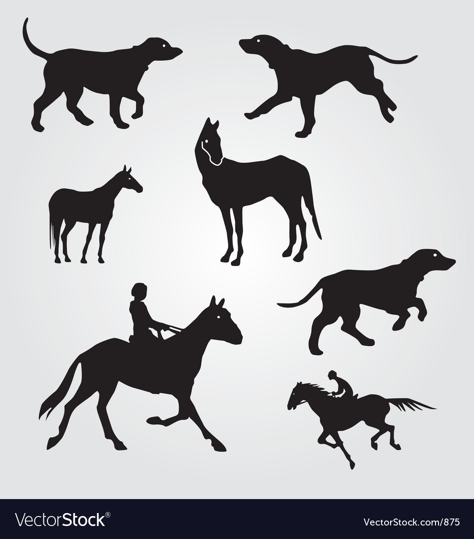 Horses and hunting dogs vector