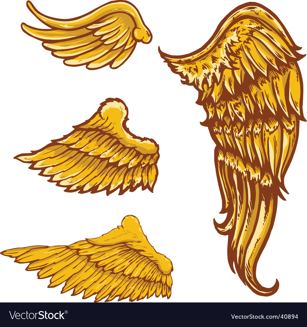 Tattoo style wings s colle vector