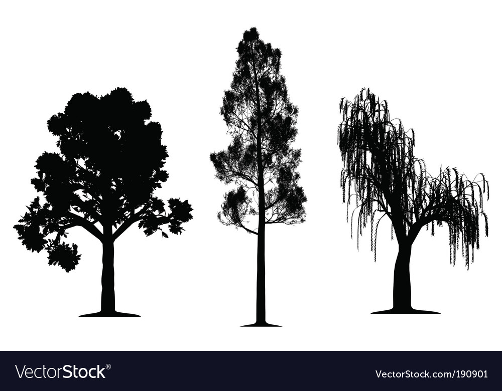 Tree silhouettes vector by Edvard76 - Image #190901 - VectorStock