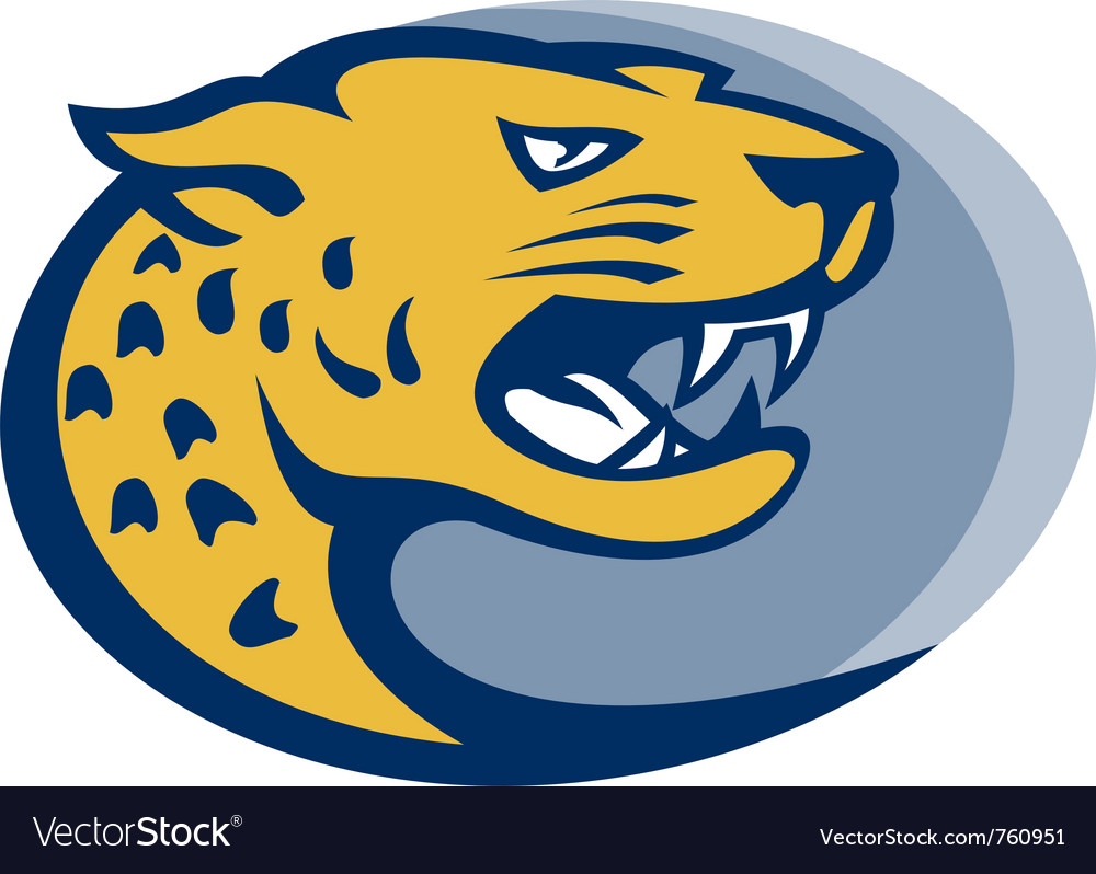 Leopard panther big cat head vector