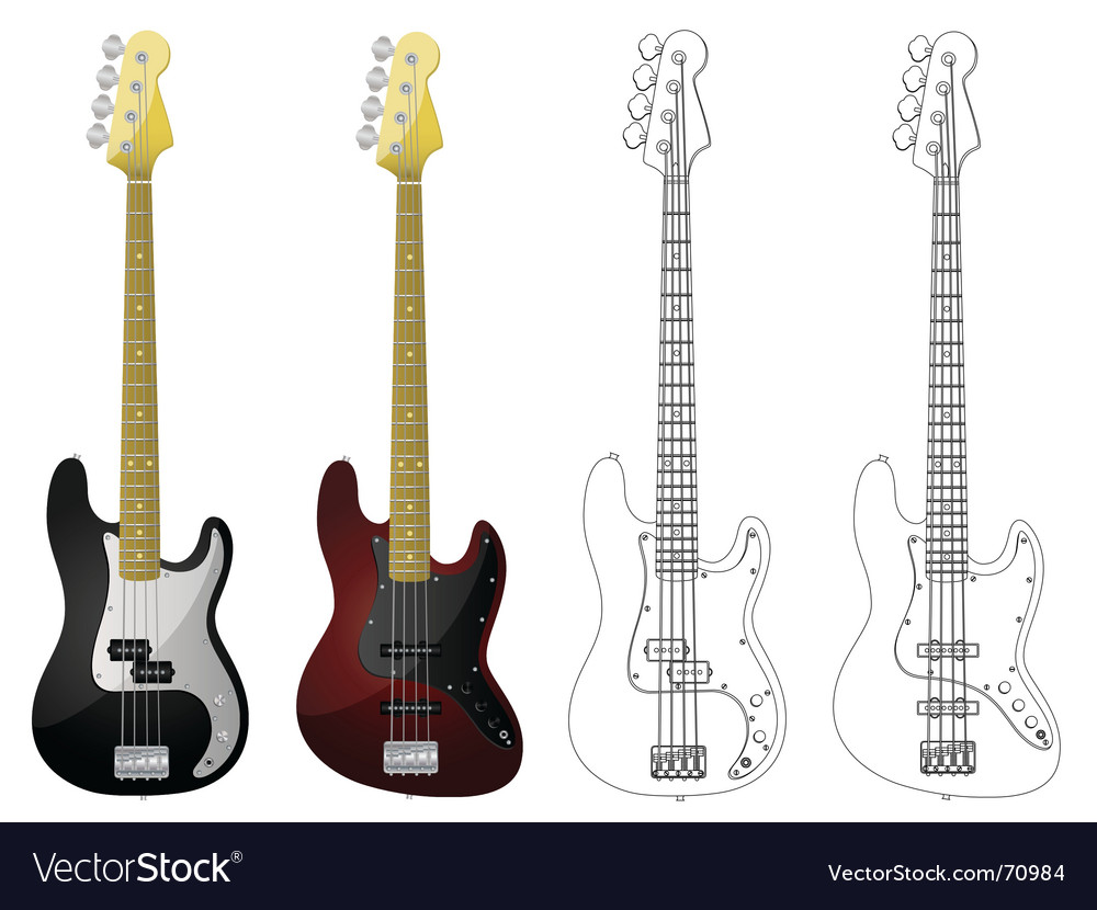 Bass guitars vector