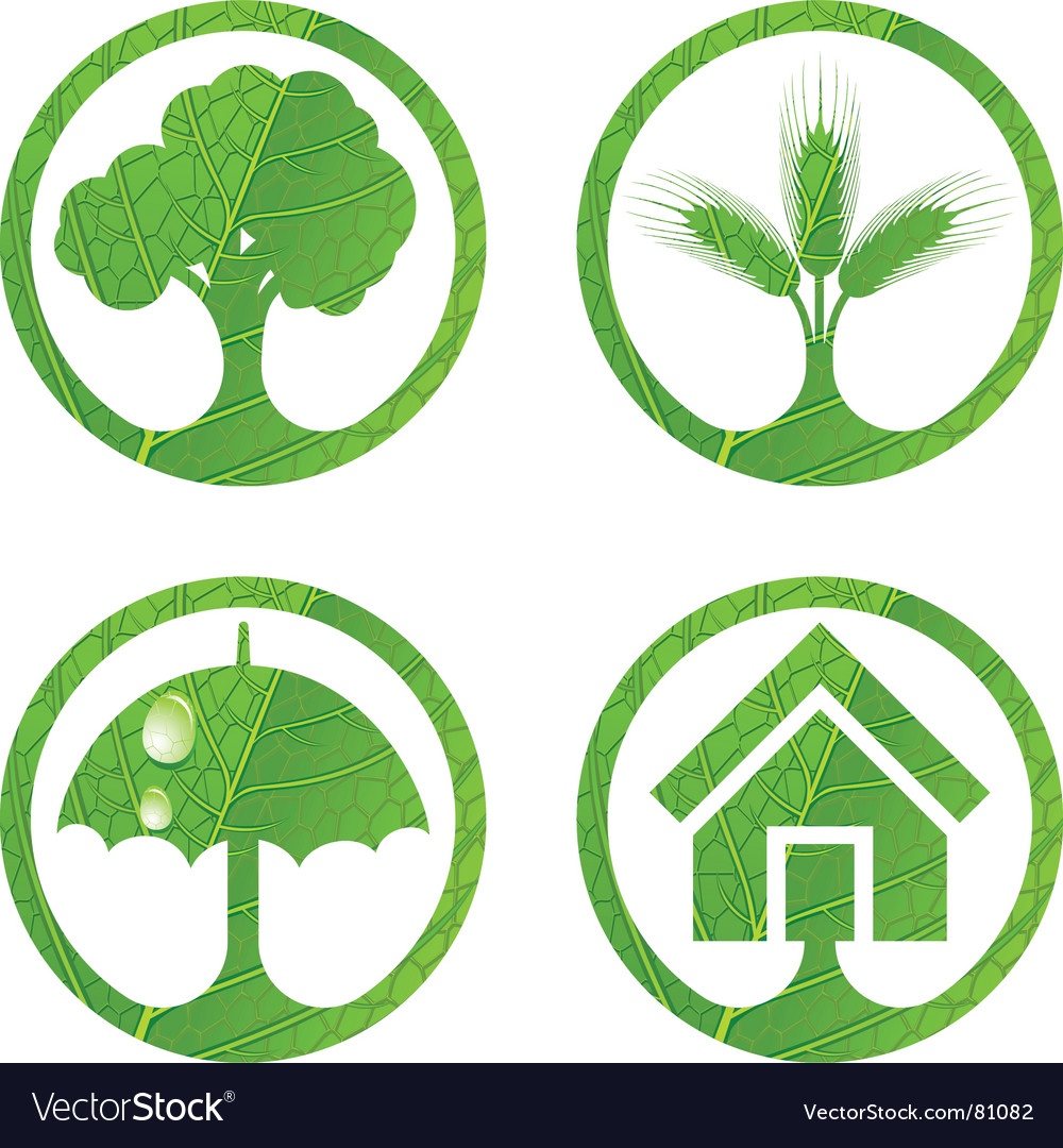 Eco signs vector
