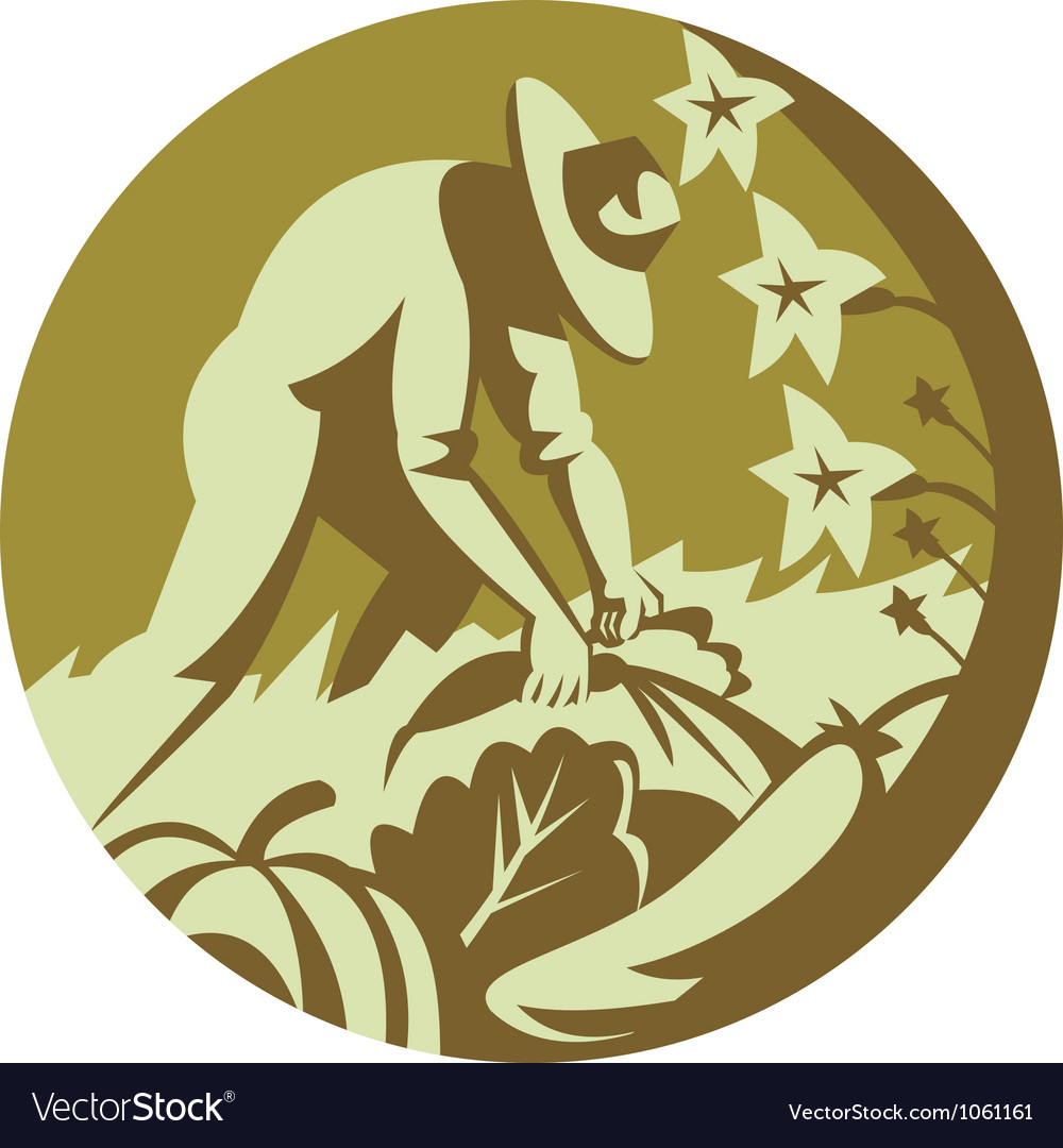 Organic farmer harvesting vegetable crops retro vector