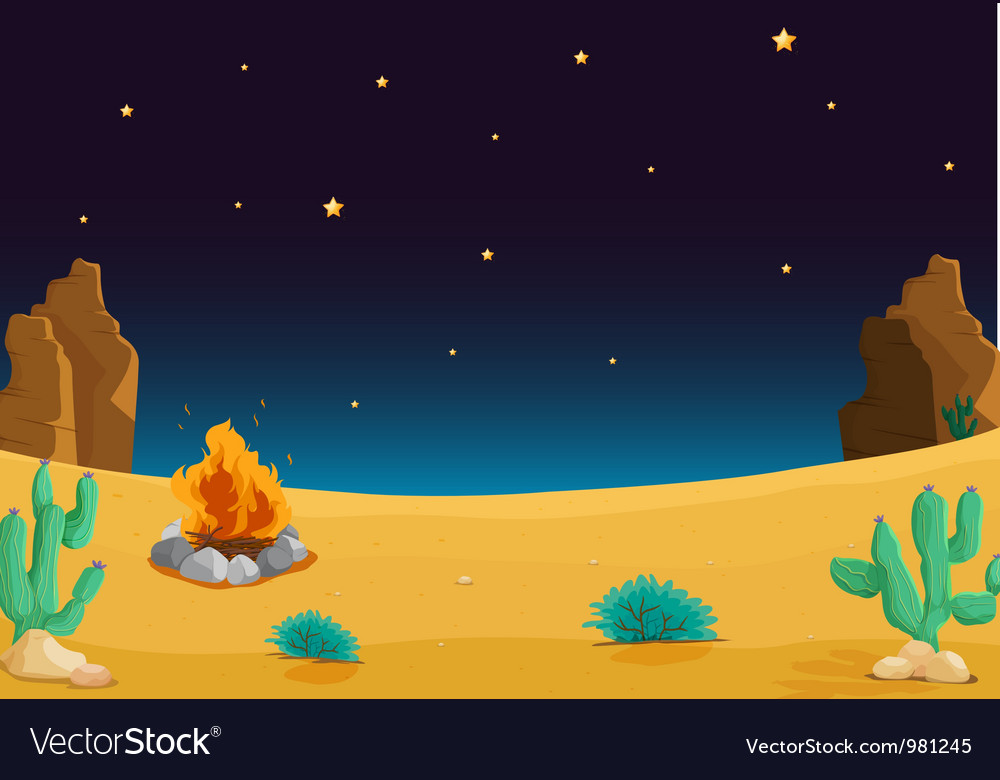 Night time desert vector
