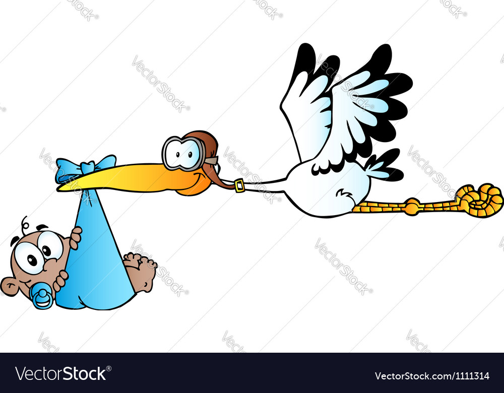 Stork delivering a newborn baby boy vector