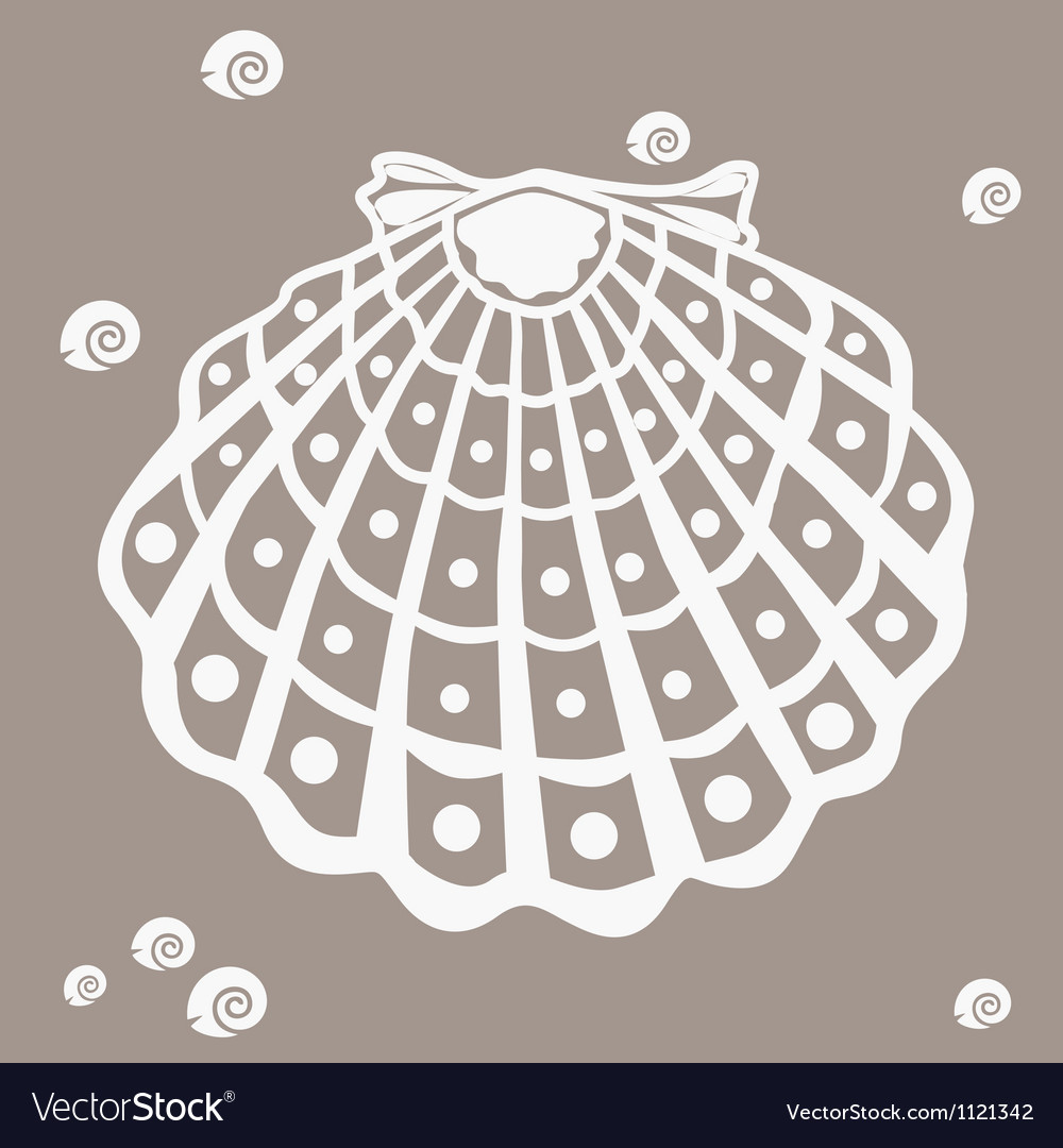 Shell design element vector