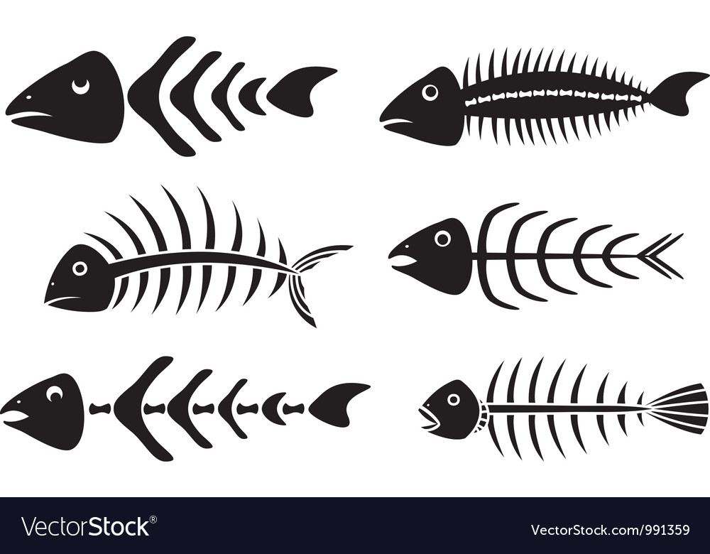 Various fishbones stencils vector