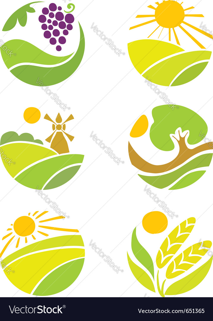 Collection of logos  agriculture vector