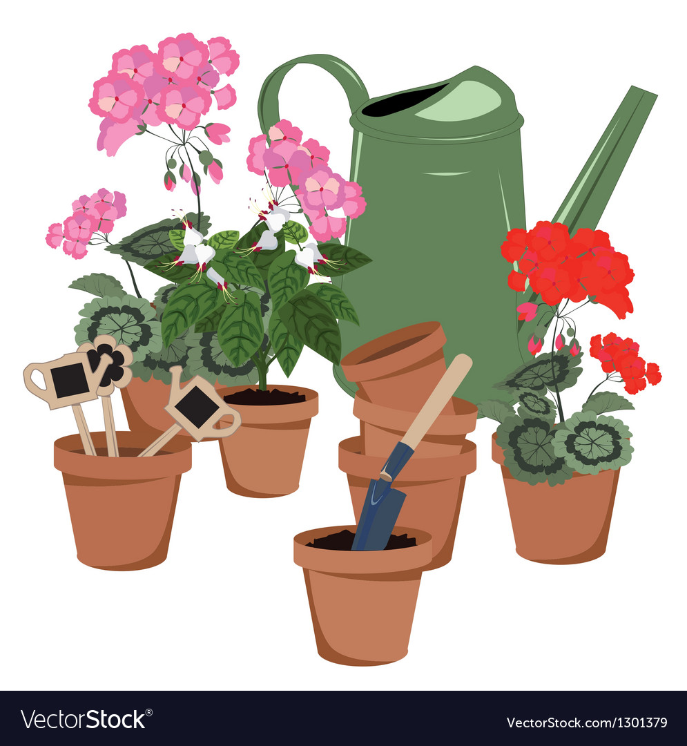 Potted flowers and watering can vector