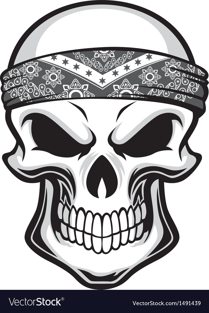 Skull wearing bandana vector
