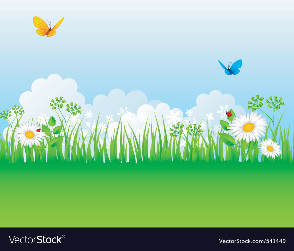 Grass backgrnd vector