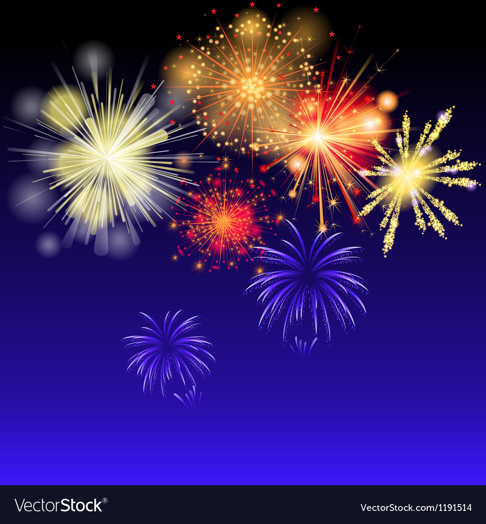 Fireworks on the sky vector