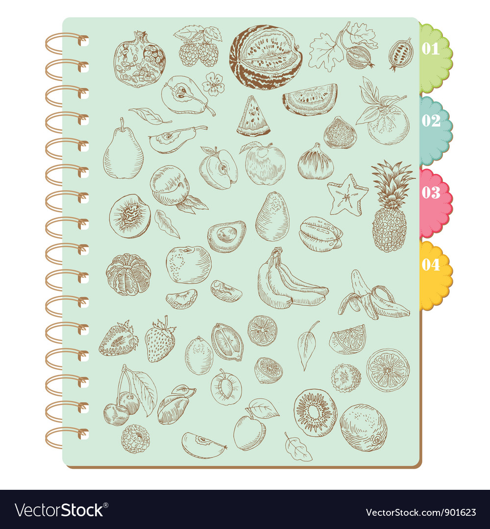 Scrapbook design elements set of various fruits vector