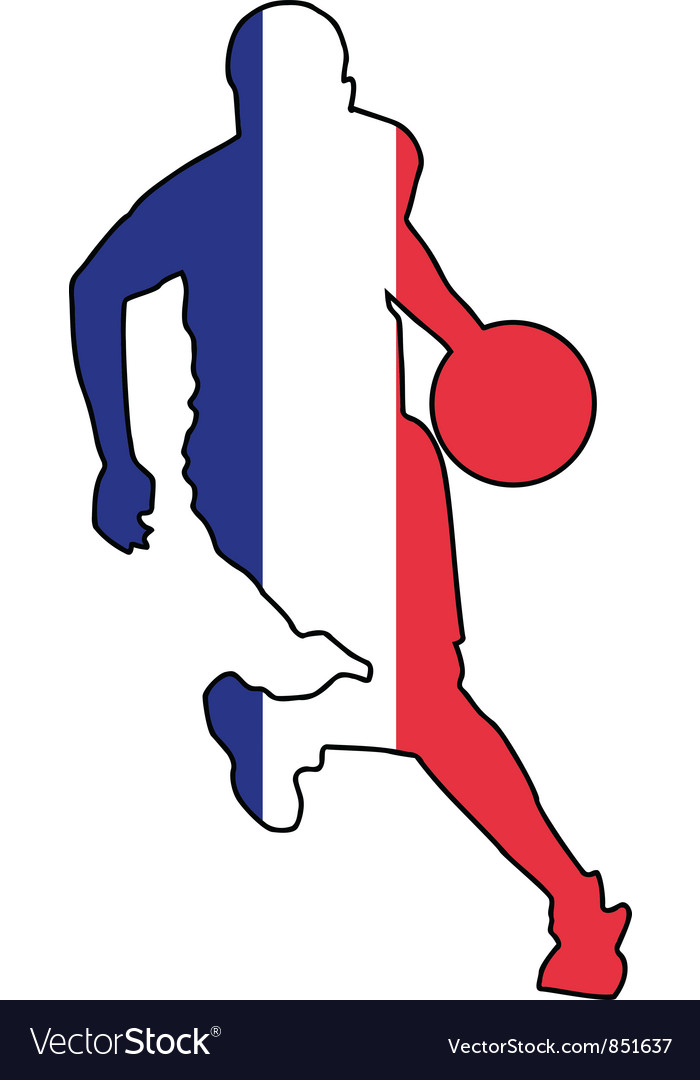Basketball colors of france vector