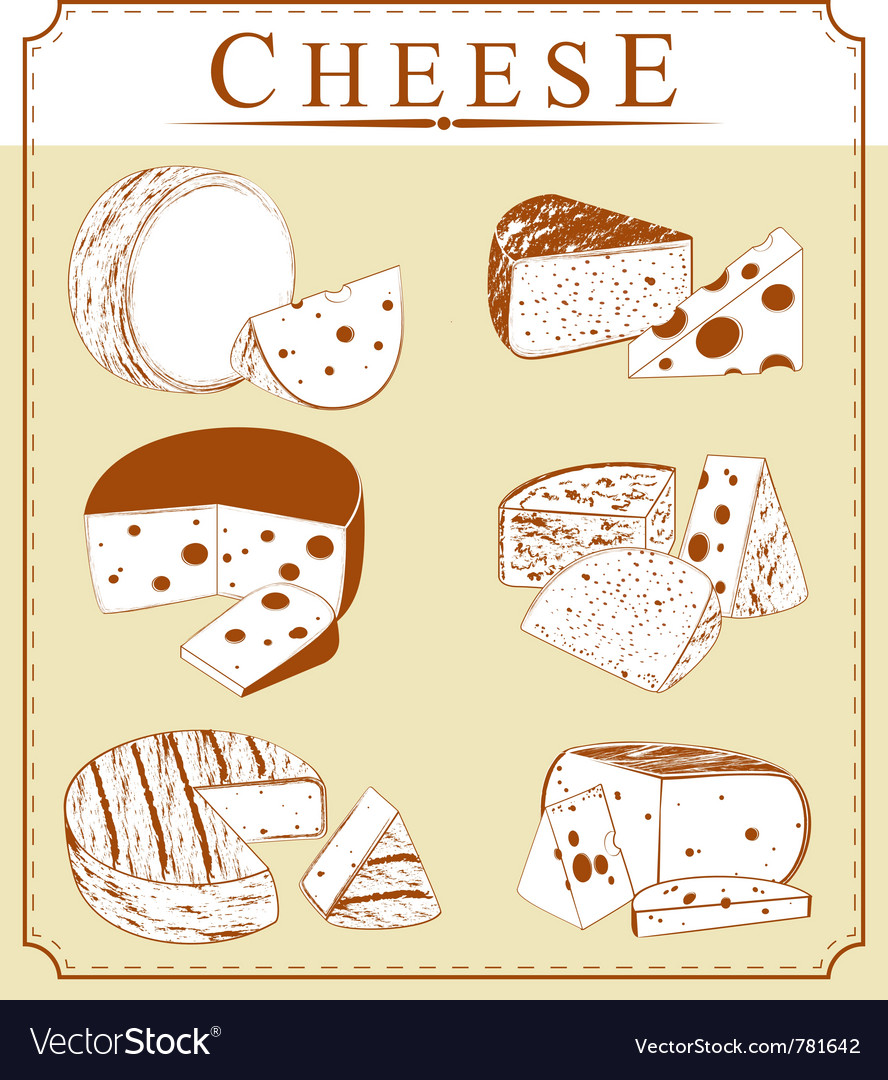 Clipart collection of cheese vector