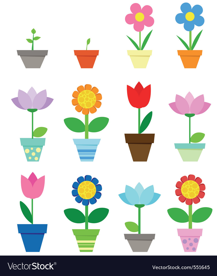 Pot flowers vector