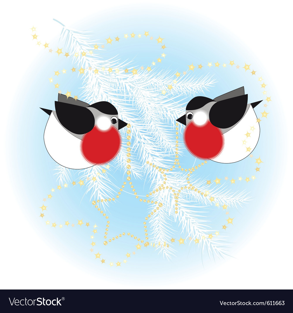 Bullfinch christmas tree vector