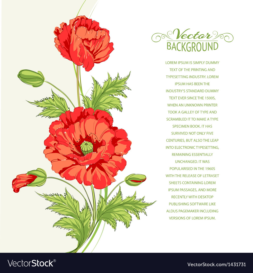 Background with poppies vector