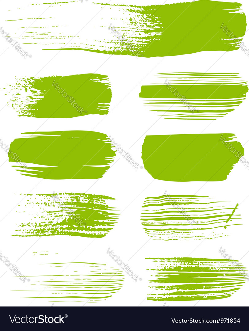 Green brush strokes the perfect backdrop vector