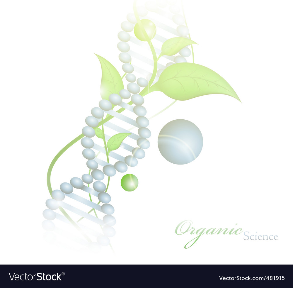 Organic science vector