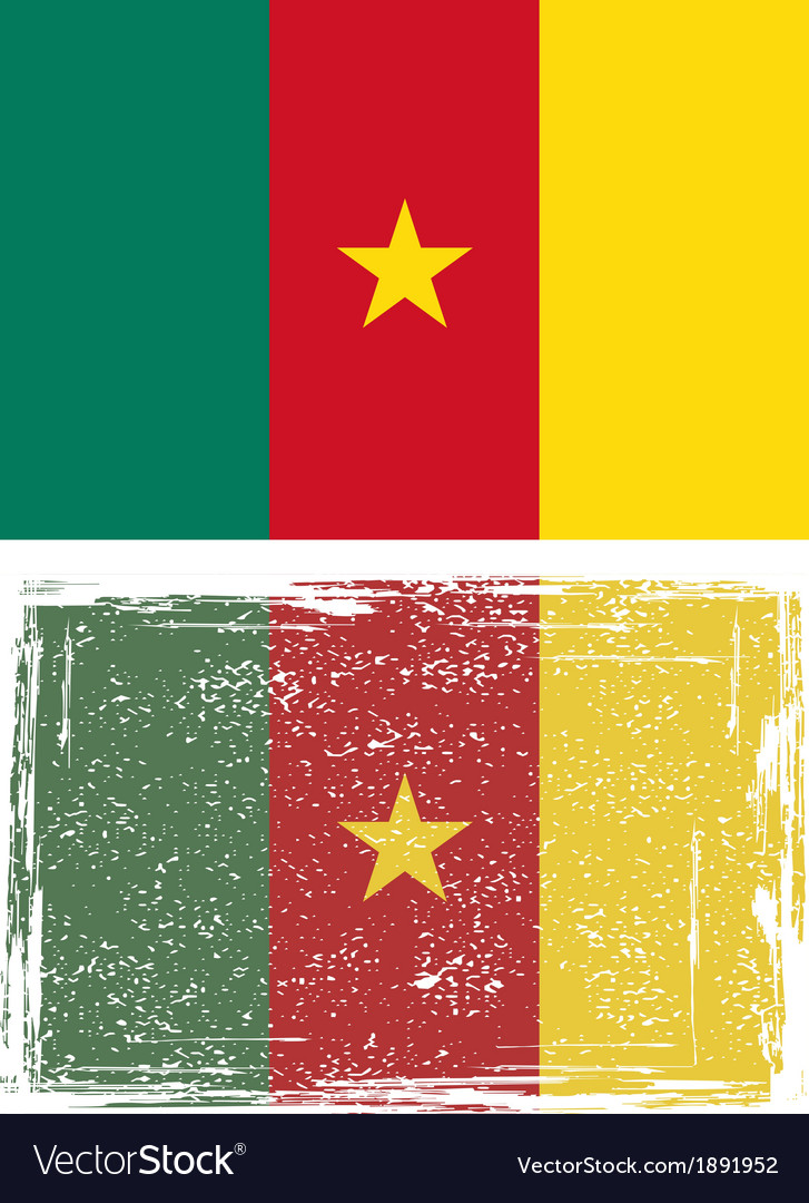 Cameroonian grunge flag vector