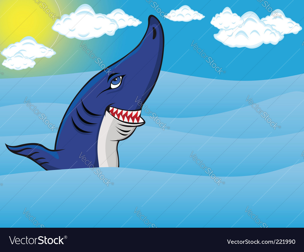 Shark in sea vector