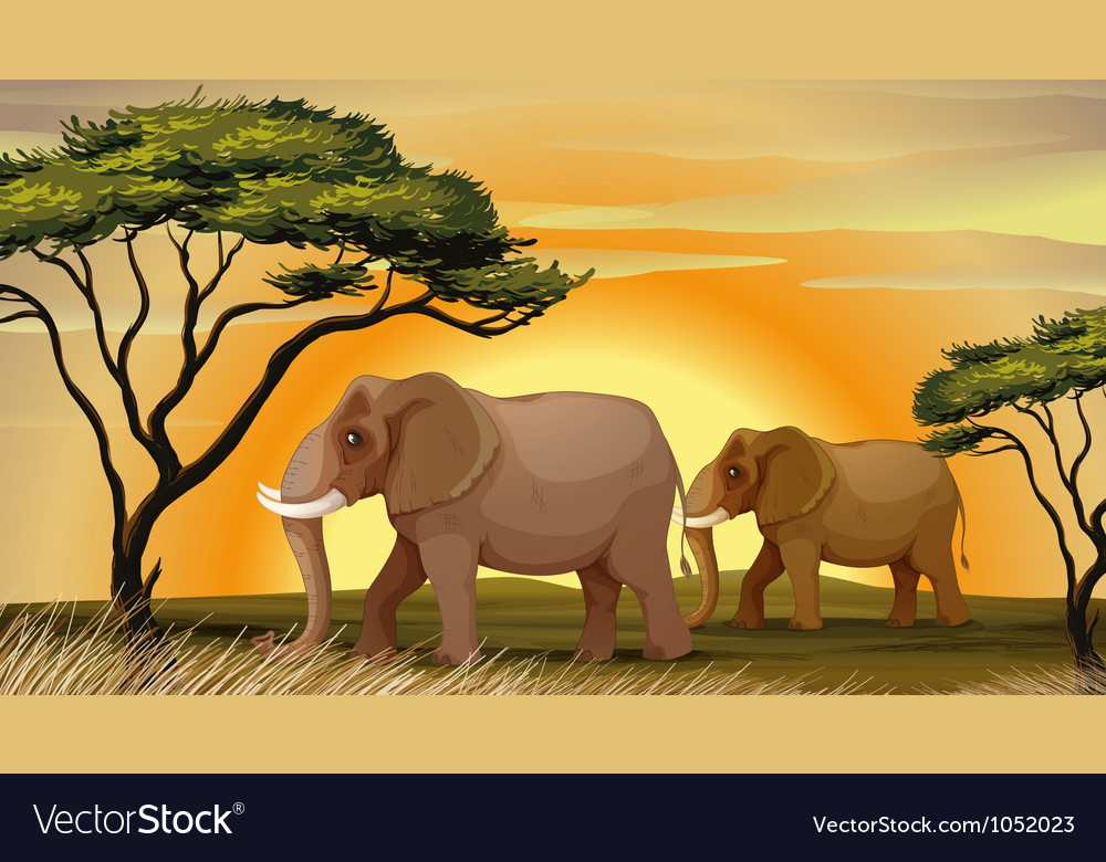 Elephant under a tree vector