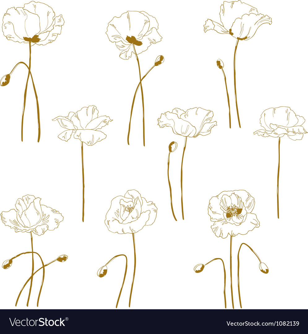 Set of onecolored outlined poppy vector