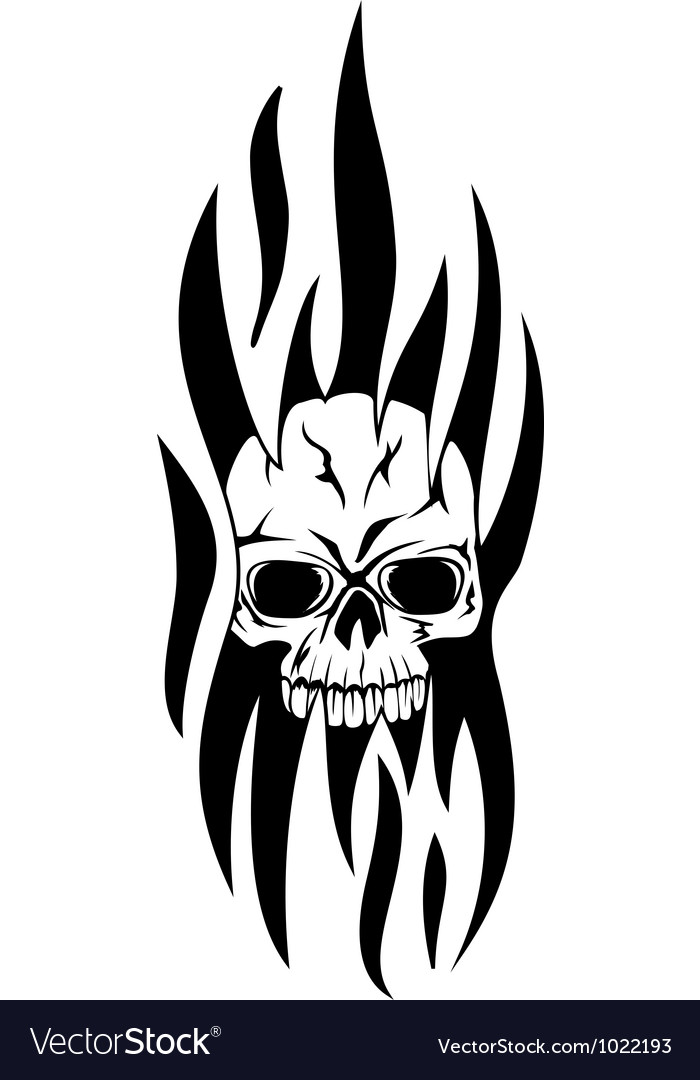 Skull tribal vector