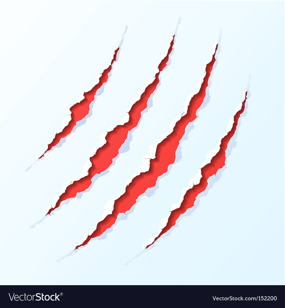 Claw scratches vector