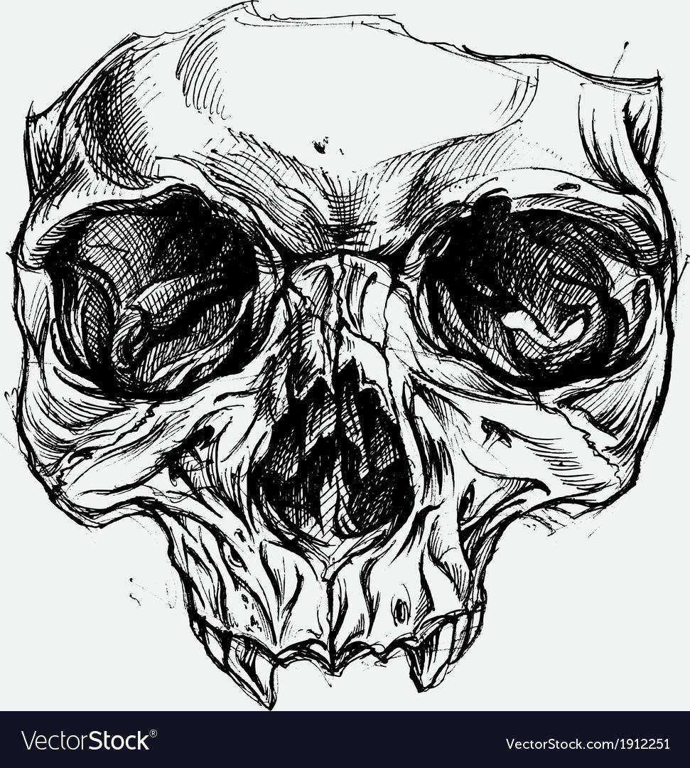 Skull drawing v... Tribal Deer Head Tattoo