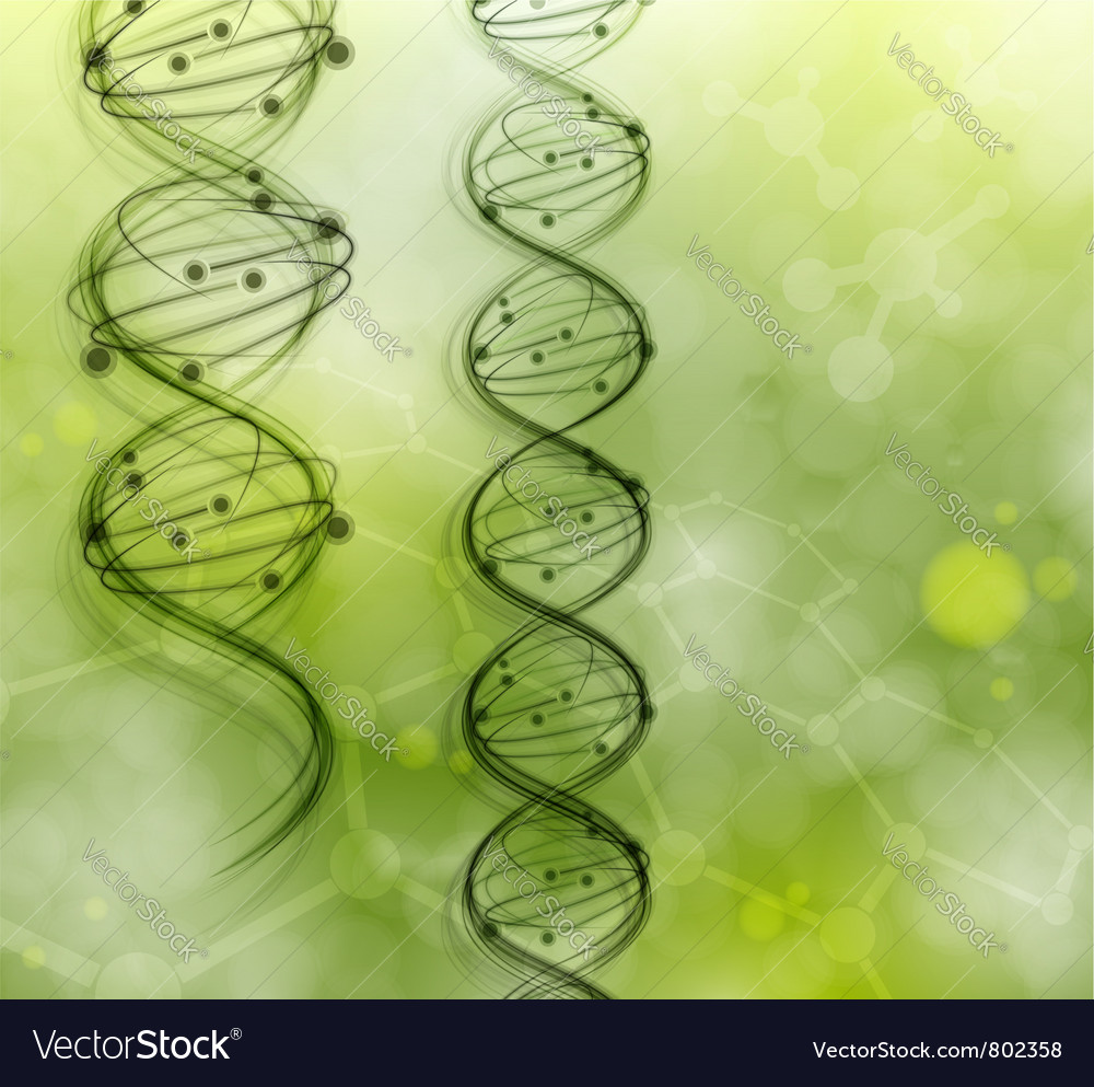 Dna strand background vector