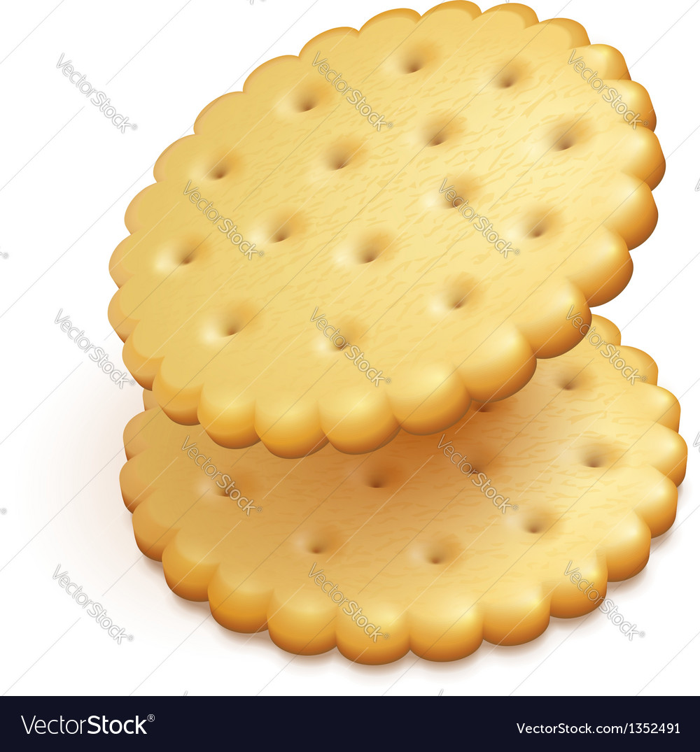 Crisp cookies snacks isolated vector