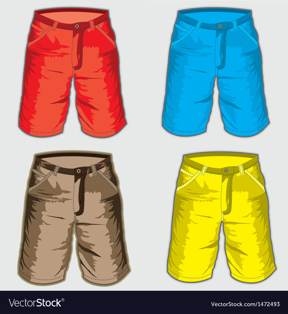 Short pant  bermuda shorts vector